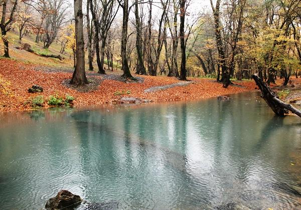 Lal spring is located in Golestan province in Besh Oyli village.Its located in the center of jungle.It is the best place for swimming.