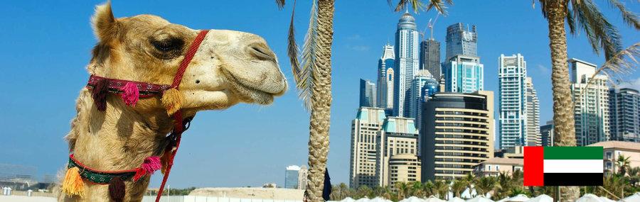 ممانعت ورود مسافرین با ویزای توریستی در کشور امارات