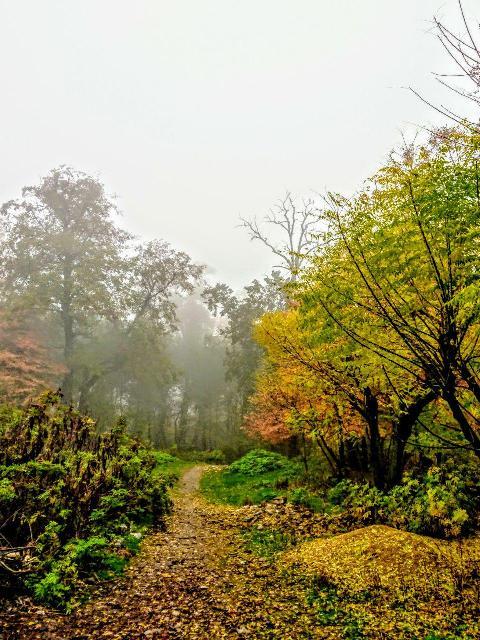 پارک ملی گلستان، بهشت گمشده ایران