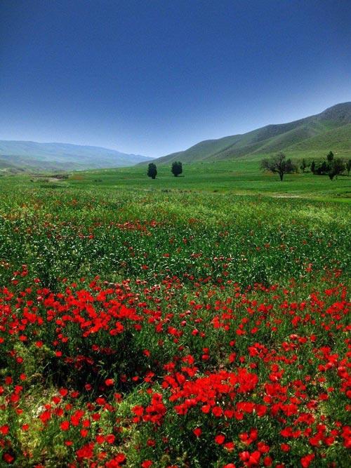 کهگیلویه و بویر احمد، سرزمین چهار فصل